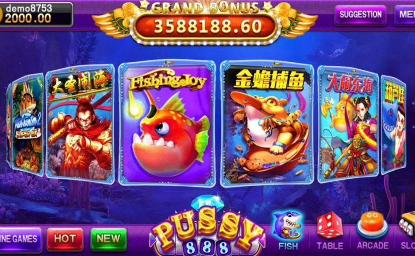 ข้อดีของการเล่นเกมส์ pussy888